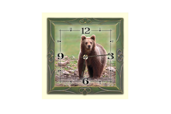 wall clock Bear